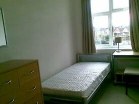Sunny room to let in shared hse. Non sm. friendly prof. female required. Quiet loc. Clean & tidy