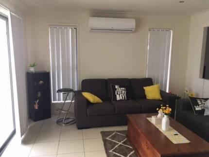 Room for rent - Fitzgibbon