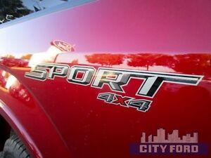 "2016 Ford F-150 4x4 SuperCrew 145"" XLT Edmonton Edmonton Area image 10"