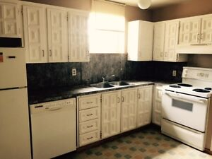 2 Bedrooms Downsuite for Rent on Centre B ST and 38 Ave NW