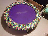 trampoline weider