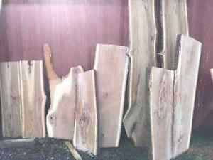 BEAUTIFUL LIVE EDGE!! VARIETY OF SPECIES! London Ontario image 9