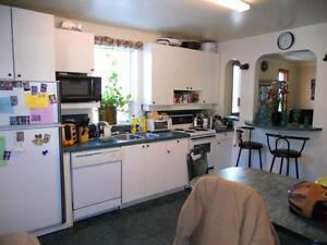 Bright and Clean - St B! Renovated 2-bdrm+Den Apt (All Utilities