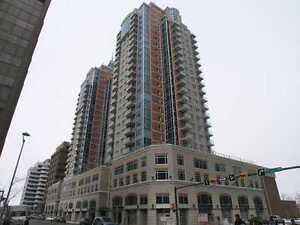 FURNISHED ONE BEDROOM EXECUTIVE CONDO DT WITH GREAT VIEWS