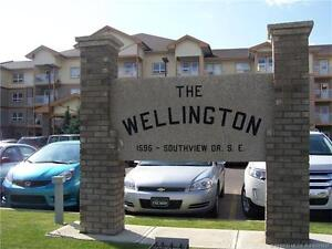 Great Condo in the Wellington