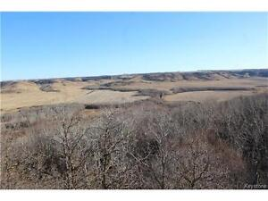 91.40 Acres Overlooking Assiniboine Valley Near Russell