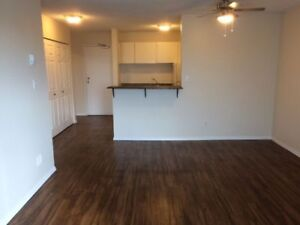 One Bedroom Suites, Excellent Location - The Woods