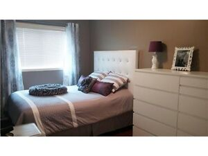 Room for rent south edmonton