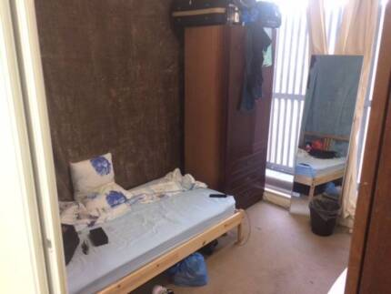 Share room for boy by Central station/UTS