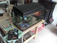 60 litre fish tank and accessories.