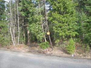 REDUCED! Choice 1+Acre Lot in Private Residential Area