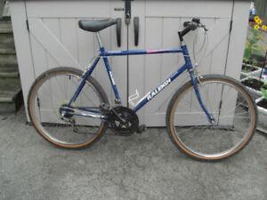 bike Raleigh adult size 26 inch wheel tall men bike