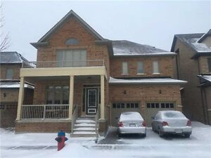 Stunning House for Lease