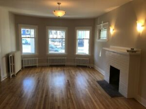 GORGEOUS VERY LARGE 5 BEDROOM APARTMENT A BLOCK TO DAL FOR MAY