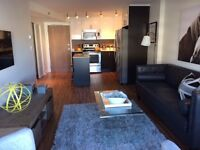 2bd in New Build Centretown - Pet Friendly- November 1st!