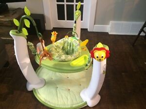 Evenflo ExerSaucer Jump and Learn Active Learning Cente