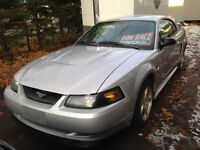 2004 Ford Mustang Anniversary Edition Coupe (2 door)