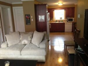 Nice downtown 4 bedroom apartment
