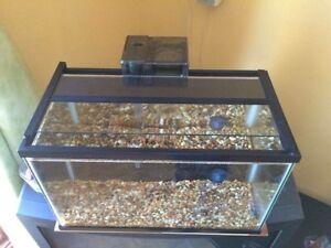 Poisson et aquarium 5gal + filtre électrique + pompe à eau