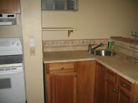 1 Bedroom Basement Apartment in Thornhill
