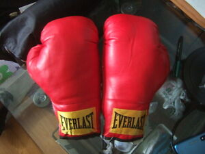 size 16 boxing glove from Everlast