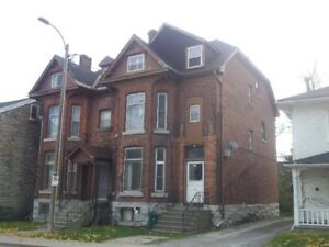 NEWLY RENOVATED 1 BDRM NEAR QUEEN'S - 156-3 Johnson St
