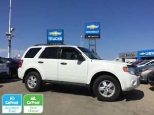 2012 Ford Escape XLT (Bluetooth, Powered Options)