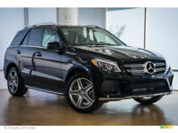 Car purchasers for luxury car exporter
