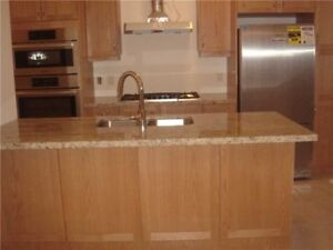 Upgraded 3 Story Brand New Executive Town Home Approx 2100 Sqft.