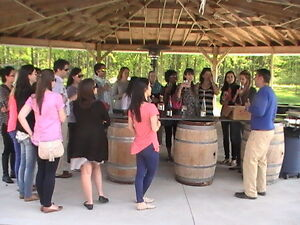 The Essex County Wine Tour Windsor Region Ontario image 3
