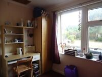Double room, single bed, very nice and clean. All bills included.