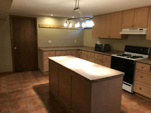1 bedroom shared basement unit near Mohawk College