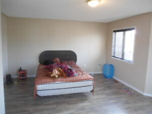 ROOM 495.0r 750  for 2 no parking main and bovaird dr June 1st
