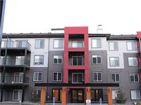 Single Level Apartment in Windermere