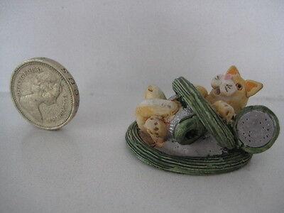 RARE ORIGINAL COLOUR BOX CAT PETER FAGAN HOME SWEET LITTLE SPINKLER HOSE PIPE