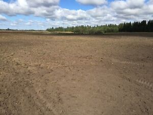 160 acres of Farmland/cropland-Lamont-For sale or Rent