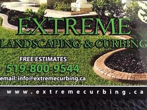 Decorative concrete curbs