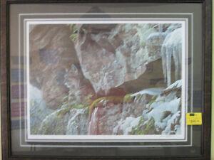 """Robert Bateman """" AT THE CLIFF - BOBCAT """" Print"""