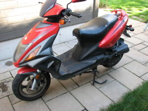 Scooter Chironex Chase 50