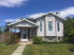 Bright Bi-Level Family Home with Room to Park a Trailer!