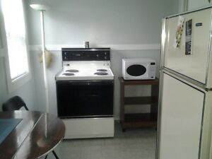 3 Bedroom Vacation Home for Rent in the Center of St. John's St. John's Newfoundland image 9