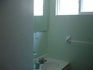 Five bedroom house for Rent at Great Location Kitchener / Waterloo Kitchener Area image 10