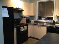 Great Downtown Location 1 Bedroom - Includes Underground Parking