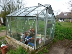"""Greenhouse, 8ft 3"""" x 6ft 3"""""""