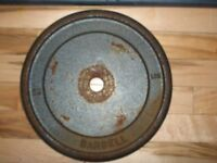 BARBELL 25 Lb Steel Weight and 1 Inch X 5 Foot Bar