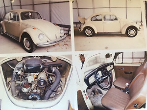 CLASSIC BEETLE - 1969 Excellent Condition