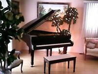 Private Music Lessons!! Buy two and get the third lesson free!!!