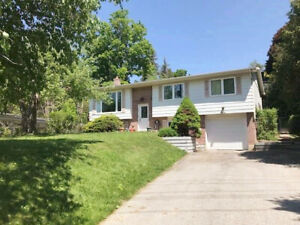 Newly Reno'd 1Bed Lower Unit LAKESIDE house near Barrie downtown