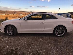 2010 Audi S5 V8, 4.2L Coupe (2 door)