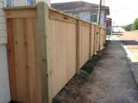 College Plus Landscaping- Fence,Deck,Concrete,Sod,Lawn,Cleanup